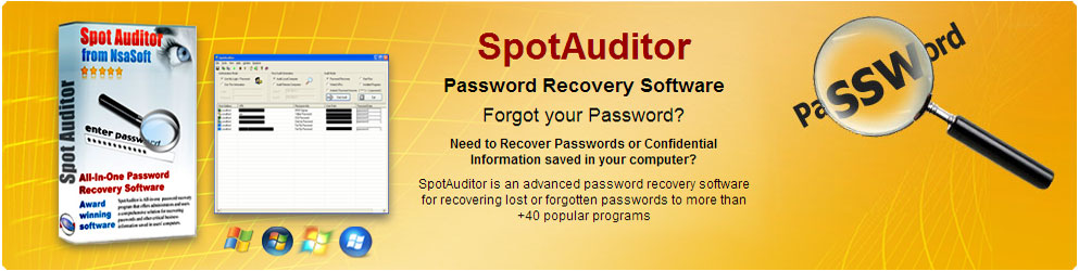 spotauditor password recovery software